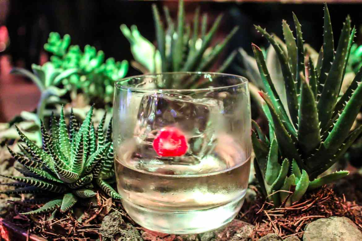 , Top 5Experiences from Day 1 at Tales of the Cocktail on Tour in Mexico City