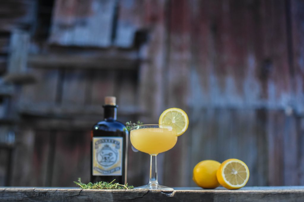 , Meyer Lemon Gimlet
