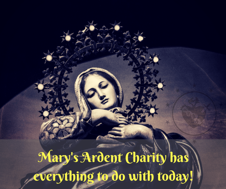 Mary's Ardent Charity Image