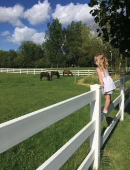 minnesota farm girl