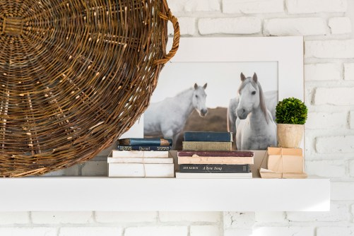 horse photo in country home