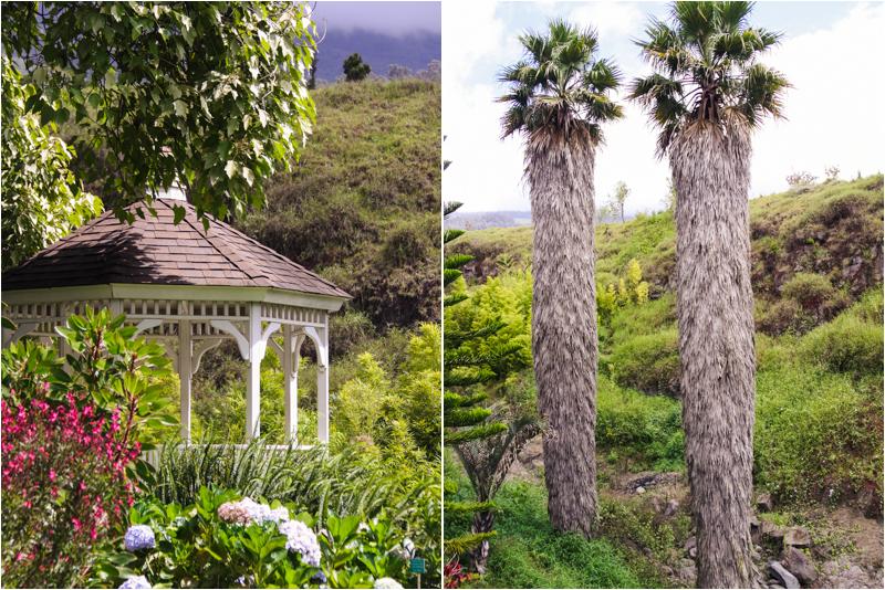 Maui Botanic Garden - Kula Botanical Garden