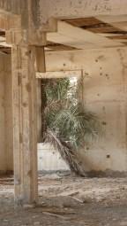 Inside an Abandoned Bank of Failaka Island, Kuwait - by Anika Mikkelson - Miss Maps