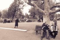 Accordion Stories - Belgrade, Serbia