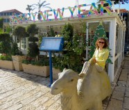 Happy New Year 2016 from Anika and the camel in Tel Aviv, Israel - Miss Maps - www.MissMaps.com