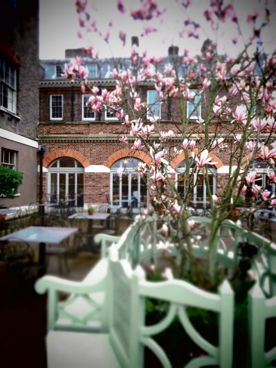 Blooms of Kensington Palace - London, England, United Kingdom - by Anika Mikkelson - Miss Maps