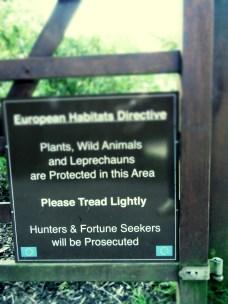 Leprechauns Protected at Blarney Castle Ireland - by Anika Mikkelson - Miss Maps - www.MissMaps.com