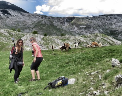 Getting that perfect goat selfie - Bosnia and Herzegovina - by Anika Mikkelson - Miss Maps www.MissMaps.com