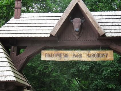The Park I THOUGHT was correct - National Park Belovezhskaya Pushcha - by Anika Mikkelson - Miss Maps - www.MissMaps.com
