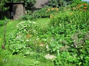 The Garden Before We Got to Work - Northern Estonia - by Anika Mikkelson - Miss Maps - www.MissMaps.com