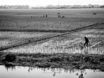 Water Walking - Rural Bangladesh - by Anika Mikkelson - Miss Maps - www.MissMaps.com