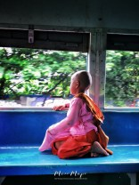 Young Nun Watching the World Go By from the Train - Yangon to Bago Myanmar - by Anika Mikkelson - Miss Maps - www.MissMaps.com