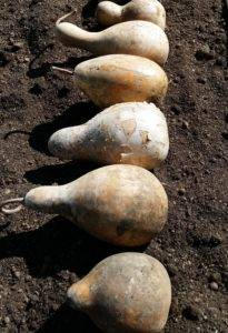 how to clean gourds
