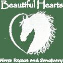 Beautiful-Hearts2