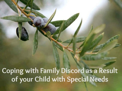 Coping with Family Discord as a Result of your Child with Special Needs
