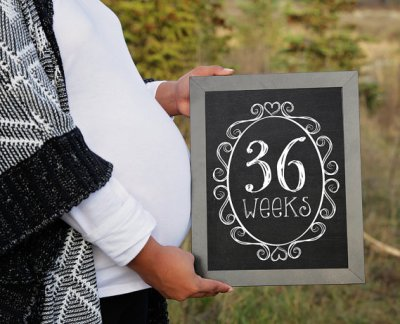 Weekly Pregnancy Chalkboards 8x10 // Set of 36 weeks - pregnancy countdown // INCLUDES GENDER REVEAL signs // Instant Download Jpeg Printable