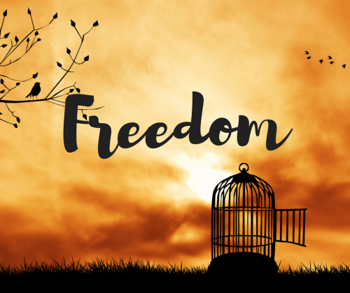 The Holy Spirit Freedom Through Of God A Bible Study On