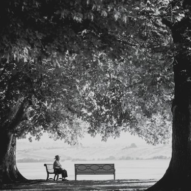 Man on a park bench