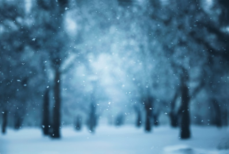 I Dream Of Winter