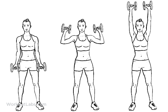 7 of the Best Exercises for a Killer Arm and Shoulder Workout