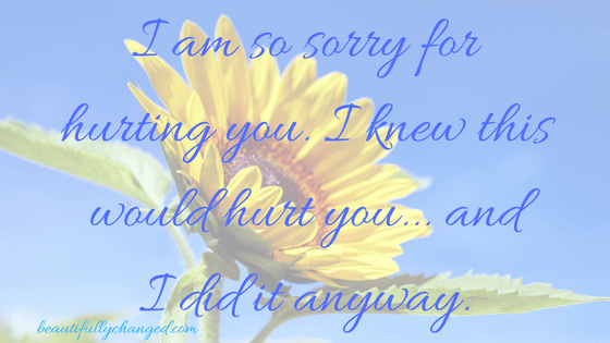 apology, heal the soul