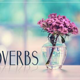 Proverbs Chapter 14-17