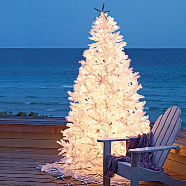 what better way to sit outside and enjoy the beautiful christmas tree lights while enjoying the company of your friends and family - Outdoor Christmas Trees