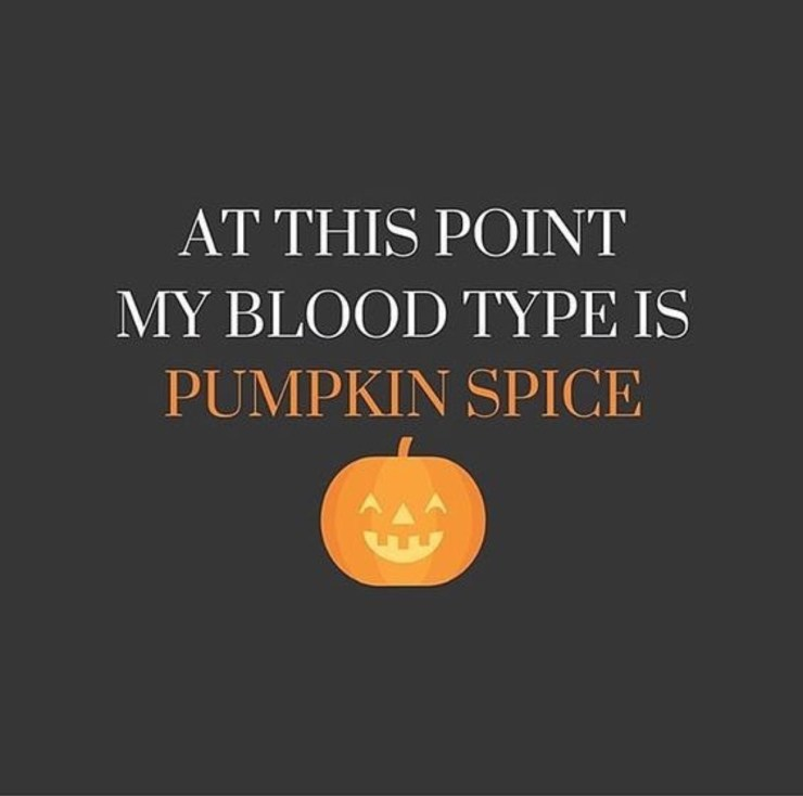 At this point my blood type is pumpkin spice