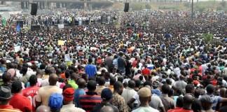 What is Nigerians population