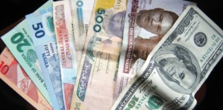 Naira and dollar notes