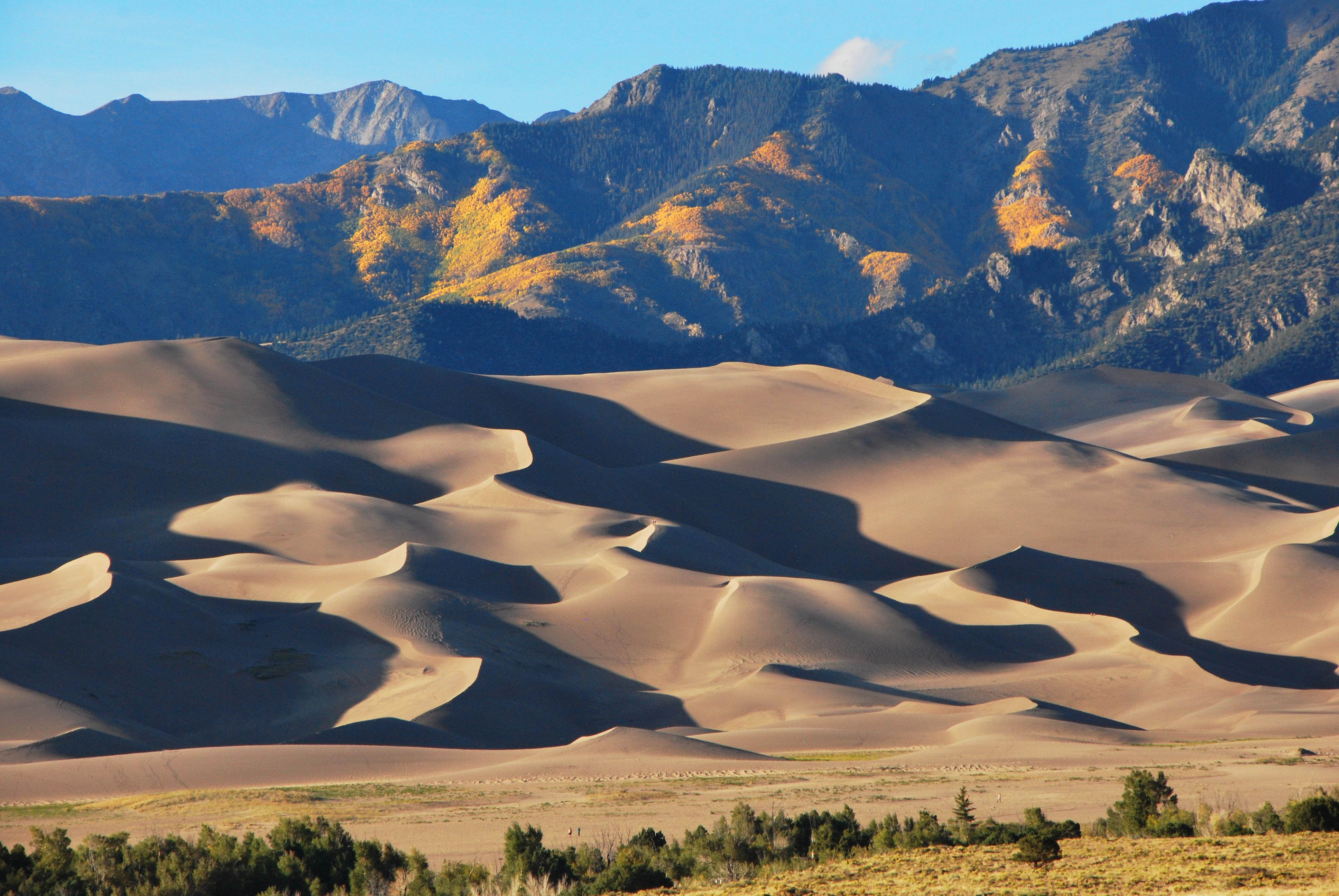 The WildLife: The Great Sand Dunes - 303 Magazine |Great Sand Dunes