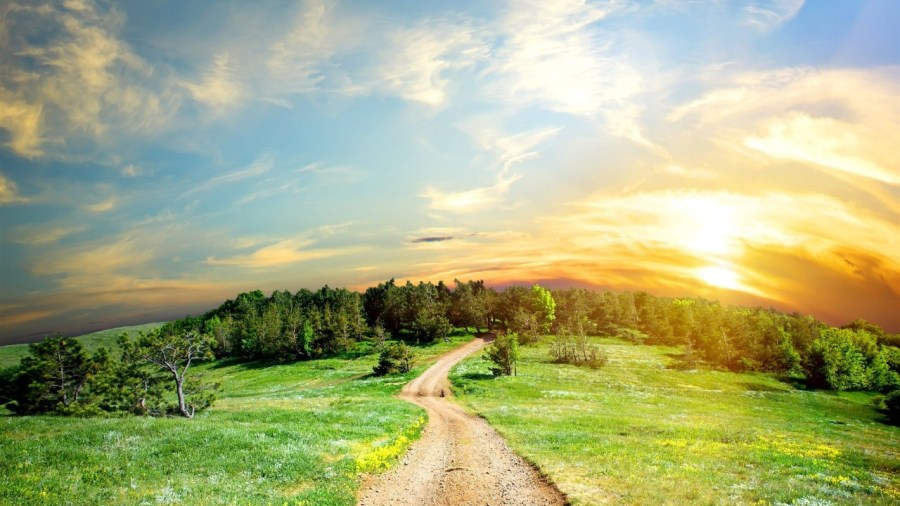 greenroad-beautiful-landscape