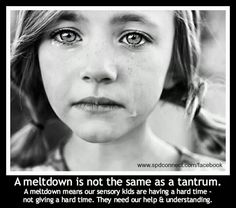 meltdown vs tantrum