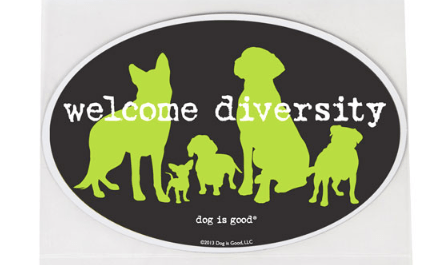 welcome diversity car magnet at beautify the beast