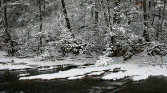 Snowy Potomac River