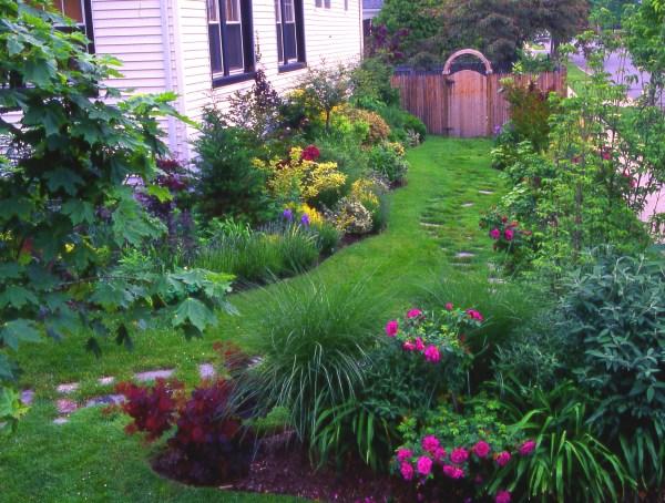 side yards & unused spaces beauty
