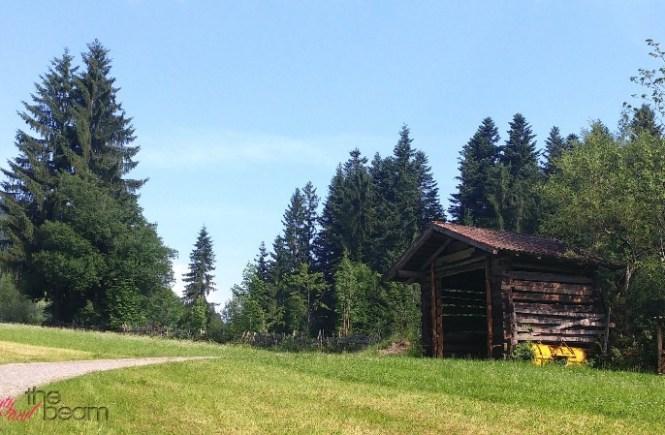 [Travel] KAT Walk durch die Kitzbüheler Alpen - Etappe 1: Wandern für Anfänger | Beauty and the beam