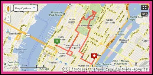 NYC Walking Tour #3- 7 miles