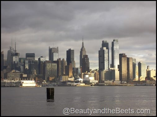 Port Imperial Manhattan view