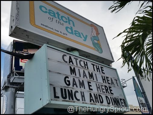 Catch Of The Day Miami