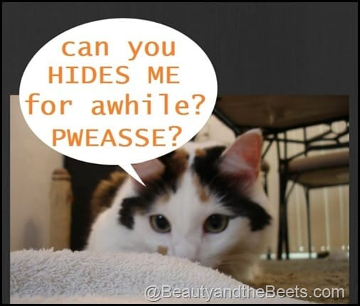 Can you hides me