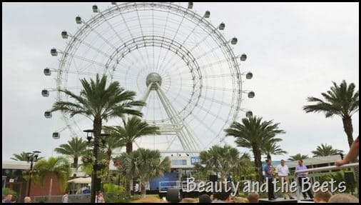 Wallenda and The Orlando Eye