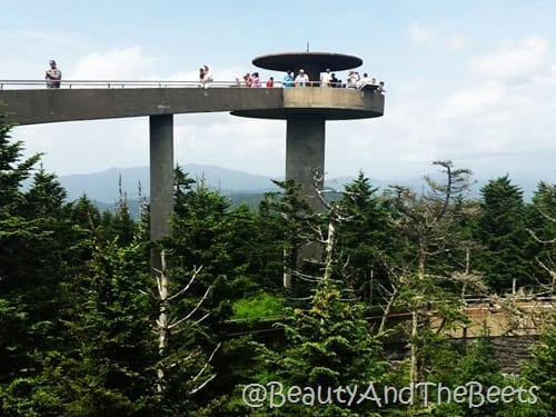 Observation Tower Clingmans Dome Beauty and the Beets
