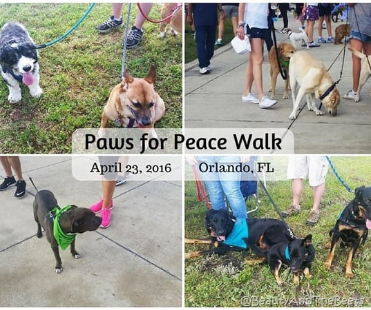 Paws for Peace Walk 2016