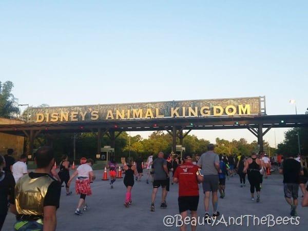 Star Wars Half Marathon Animal Kingdom Beauty and the Beets