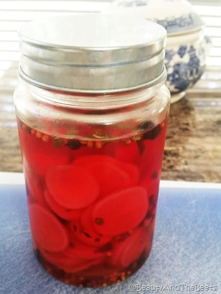 Pickled Radish Beauty and the Beets (4)