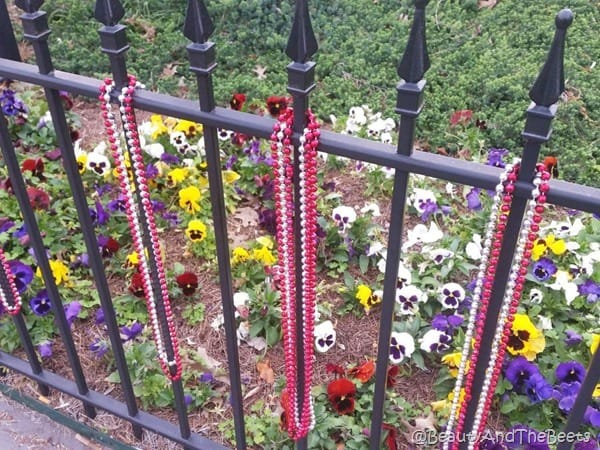Beads everywhere New Orleans Beauty and the Beets