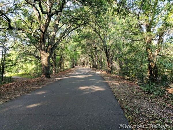 West Orange Trail Orlando Beauty and the Beets 1