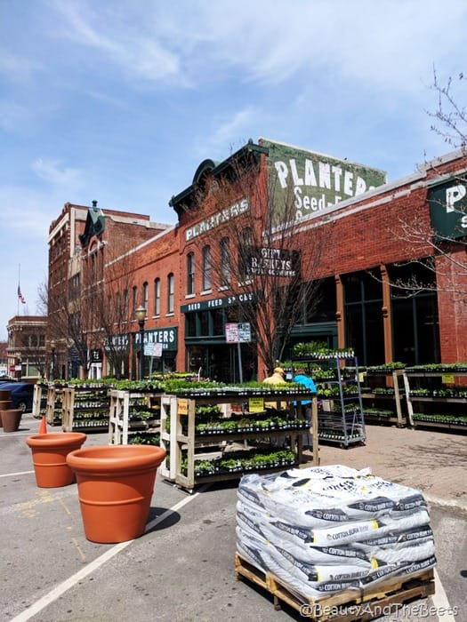 Planters Seed and Feed Kansas City Beauty and the Beets
