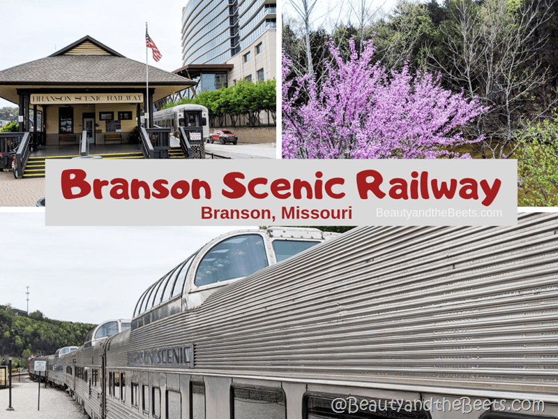 Branson Scenic Railway Branson Missouri Beauty and the Beets